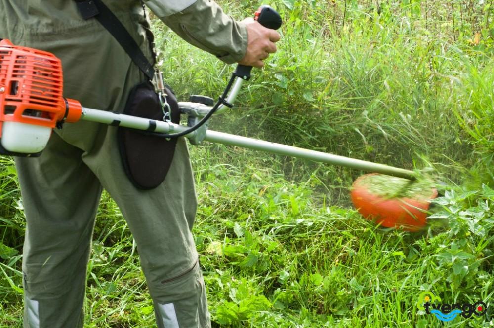 сильные закон о скашивании травы на участке нужно для